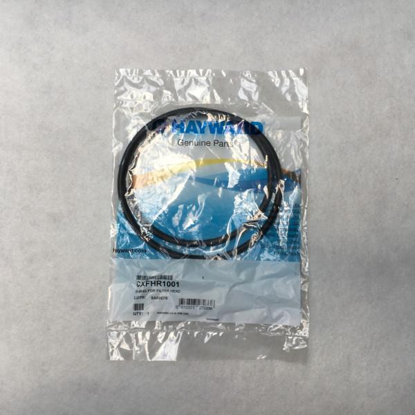Joint de couvercle filtre à cartouche Hayward